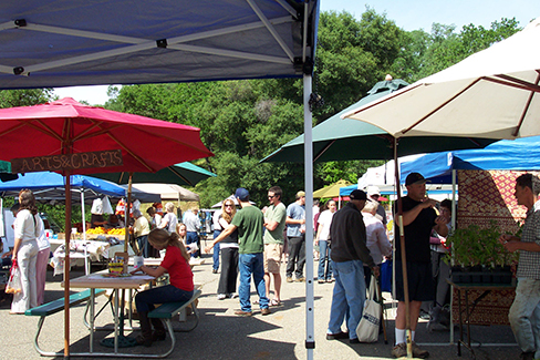 A Busy Opening Day - Jackson Farmers Market
