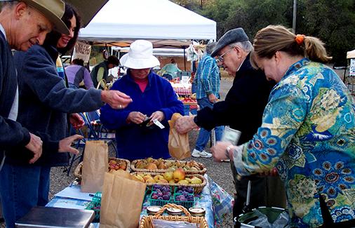 Buying Autumn Fruit