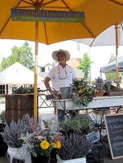 Flower cart at Sutter Creek Farmers Market