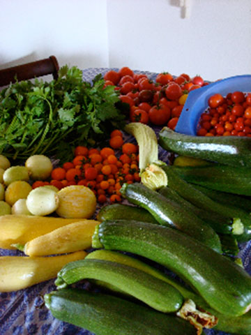 Assorted Amador County Summer Produce