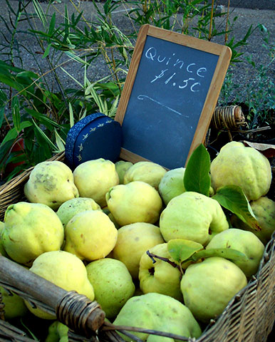 Local Quince