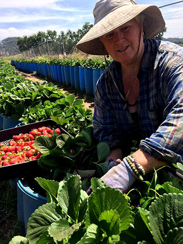 Mary Pulskamp Farm