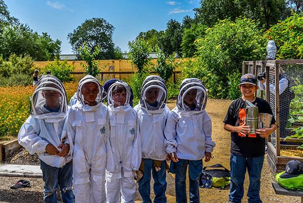 Amador-County-3rd-graders-visit-Honeybee-Haven